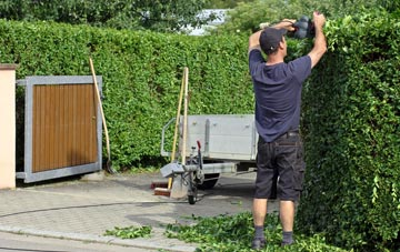 professional Brent hedge cutting services