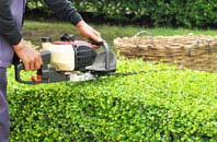 Brent hedge trimming services